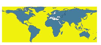 world-map-raw